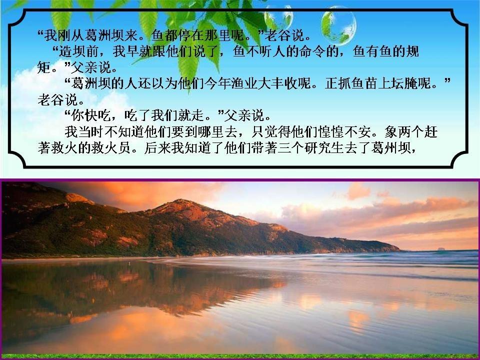 wuchuanmi_yangtze_river_fish_protector_09