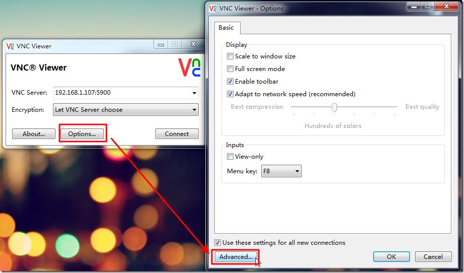 vnc viewer options advanced