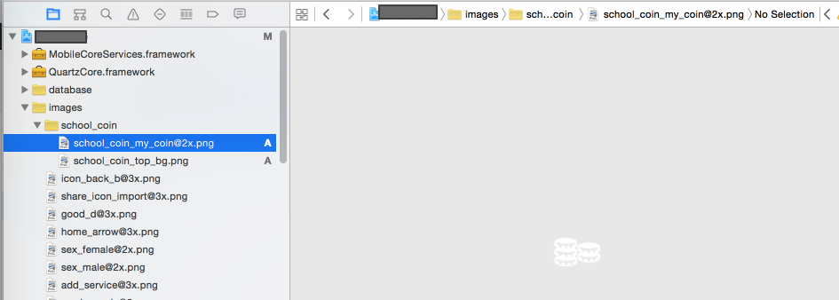 change name with 2x for image